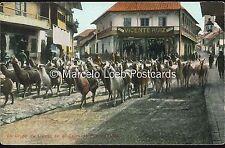 PERU UN GRUPO DE LLAMAS EN EL CERRO DE PASCO ED. POLACK SCHNEIDER 132 71316