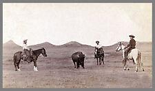 """1887 Photo, Cowboy, Roping, Buffalo, Horse, 17""""x11"""", Western, Ranch, antique"""