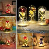 Forever Rose 24k Gold Dipped&Trim Genuine Flower Eternal Love Romantic /w Gift