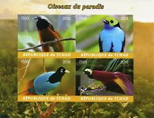 Chad 2018 MNH Birds of Paradise Blue Raggiana Bird-of-Paradise 4v Impf MS Stamps