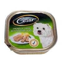 CESAR Pets Food Wet Dog Food CHICKEN and CHEESE Flavored For Adult Dogs 100g.