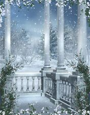 3x5ft Vinyl Photography Backdrops Winter Snow Palace Backgrounds Studio Props