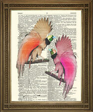 "DICTIONARY PAGE PRINT: Exotic Pink Birds of Paradise Vintage Antique Art (8x10"")"