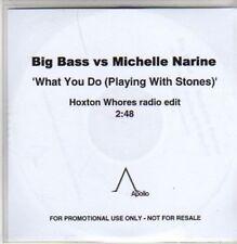 (AC219) Big Bass vs Michelle Narine, What You Do- DJ CD