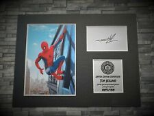 More details for tom holland - spider-man - signed autograph display - avengers