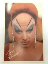 Divine in John Waters Pink Flamingos Photo Postcard
