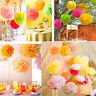 9 Pcs Mixed Tissue Paper Pompoms Pom Poms Hanging Garland Wedding Party Decor~