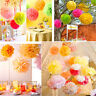 9 Pack Mixed Tissue Paper Flower Pompom Pom Poms Hanging Garland Party Decor