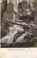 Narrowsburg, NEW YORK - Peggy Runway Falls - 1908 - Sullivan County