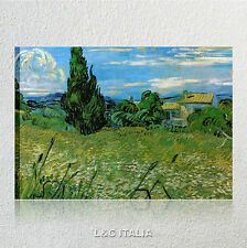 Van Gogh, Campo grano verde con cipresso verde QUADRI MODERNI STAMPE TELA ARTE