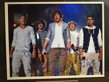 ~ Autographs Signed ~ One Direction Band Photo 11 x 14 ~ Framed ~