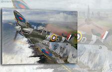 Spitfire MkVb RF-D BM144 Zumbach 303 Sq Aviation Art Canvas print