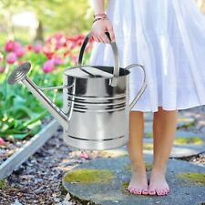 10L Capacity Metal Watering Can for Indoor Outdoor Plants with Rose Galvanized
