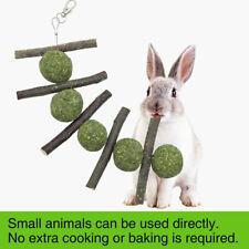 Cute Rabbit Guinea Pig Pet Grass Ball Branch Molar Chew Play Teething Toy SUPER