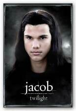 Twilight Jacob Solo Poster Taylor Lautner