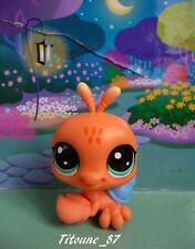 LITTLEST PETSHOP - BERNARD L'HERMITE ( 52 ) - NOUVELLE COLLECTION 2017