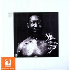 After the Rain by Muddy Waters Vinyl LP Record 2011 NEW