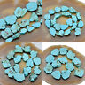 Blue Turquoise Gemstone Freeformed Nugget Sliced Beads 16'' Pick Size