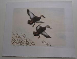 Vintage Signed Artist Proof Tom Hennessey Duck Print Maine Wildlife Artist USA