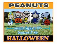 Halloween Peanuts Combo Party Yard Decorations