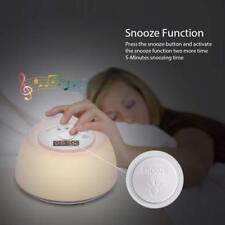 EasyAcc LED Natürliche Wake-Up Licht Wecker Sonnenaufgang Nachtlicht Radio