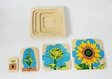 New Biology/ Zoology Puzzles - Flower Life-Cycle