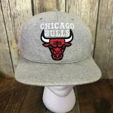 Mitchell & Ness Chicago Bulls Snapback Hat Gray Cotton Fleece Hardwood Classics