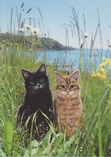 Cats Pendennis Point Blank Greetings Card From Painting By Celia Pike 039