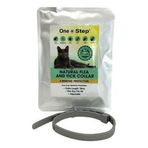 All-Natural Flea & Tick Cat Collar   8 Months Protection   Eco-Friendly   38cm