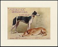GREYHOUND DOGS GREAT DOG FOOD ADVERT PRINT MOUNTED READY TO FRAME