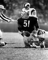 NFL 1960's Chicago Bears HOFer Dick Butkus vs  Rams 8 X 10 Photo Picture