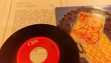 """IMMACULATE FOOLS Prince 7"""" VINYL Netherlands Cbs 1990 Includes Promo Info Card"""