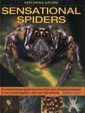 Exploring Nature - Sensational Spiders : A Comprehensive Guide to Some