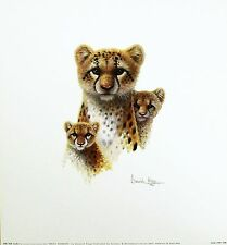 Warwick Higgs Magic Moments Cheetah Cubs Art Print Nuevo Tamaño: 36 Cm X 33cm Raro