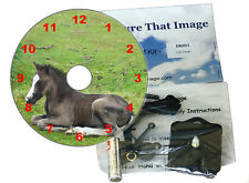 DIY CD Clock KIT. New Forest Pony. Great gift for any Horse or Equine Fan.