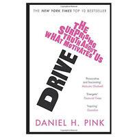 Daniel H. Pink Drive Paperback NEW