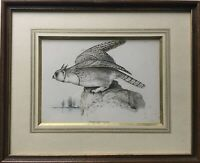 Tier Portrair Bubo Arcticus Virginia Uhu Eule Vogel Lithografie Amerika 32 x 40