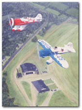 Gee Bee Sportsters by Sam Lyons - Grandville Brothers - Aviation Art Print