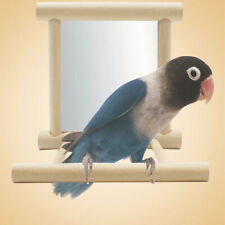 Funny Wooden Pet Bird Toy Mirror Stand Platform Toys For Parrots Cockatiel USA