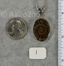 CUT AMMONITE PENDANTS $59 Sterling Silver Fossil Jewelry STARBORN CREATIONS NEW!