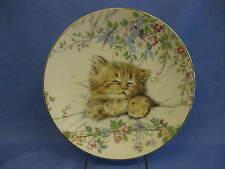 Royal Worcester 'Cat Nap' Bone China Plate 'Kitten Classics' ~ English China