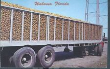 WABASSO FLORIDA LOAD OF ONIONS PM 1975  ( FL-w misc)
