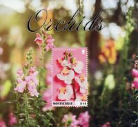 Montserrat Flowers Stamps 2019 MNH Orchids Boat Orchid Flora Nature 1v S/S