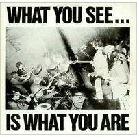 ALTERNATIVE TV ~ What You See...Is What You Are ~ 1978 UK 7-track vinyl LP