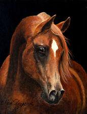 ACEO card, Arabian Horse, Horse Decor, Western, Arab Horses
