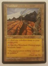 Wasteland | Tempest | En | modified art | mtg | magic | FAST shipping!!