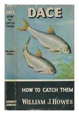 Dace - How to catch them