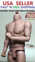 1/6 Scale Male Muscular Figure body for Worldbox Hot Toys TTM20 Ganghood 1.0