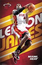 Miami Heat LeBron James Poster 22x34 T13055