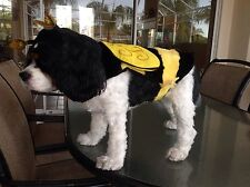 NEW TOP PAW BUMBLEBEE DOG COSTUME CLOTHES  PET XL